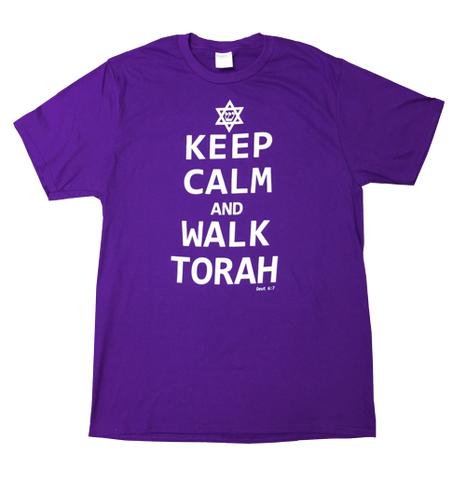 Keep Calm and Walk Torah T-shirt