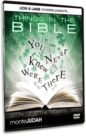 Things in the Bible You Never Knew were There 2 - Secrets in the Hebrew Text