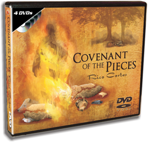 Covenant of the Pieces