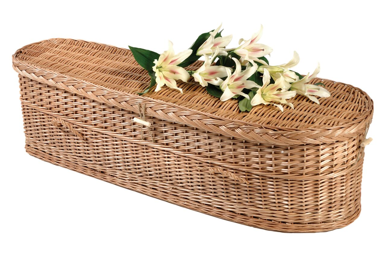 Willow Infant Casket
