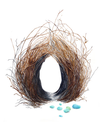 Amazing watercolour of a bird nest by artist Michelle SaintOnge. This is a bowerbird nest. The bowerbird is renowned for it's unique courtship behaviour, where males build a structure and decorate it with sticks and brightly coloured objects in an attempt to attract a mate.