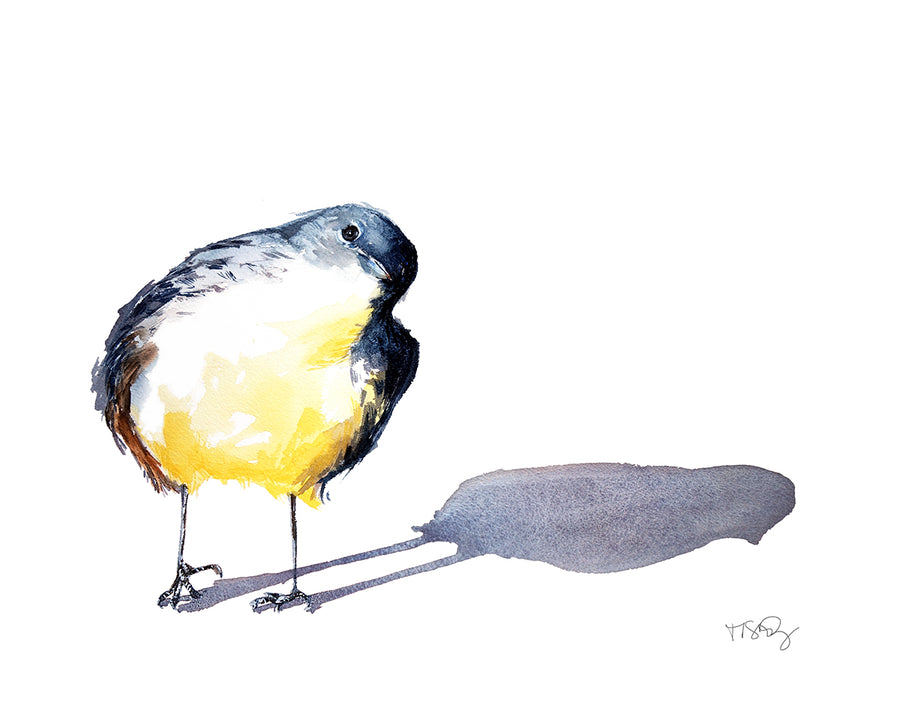 A cute plump warbler painted in watercolor by artist Michelle SaintOnge.