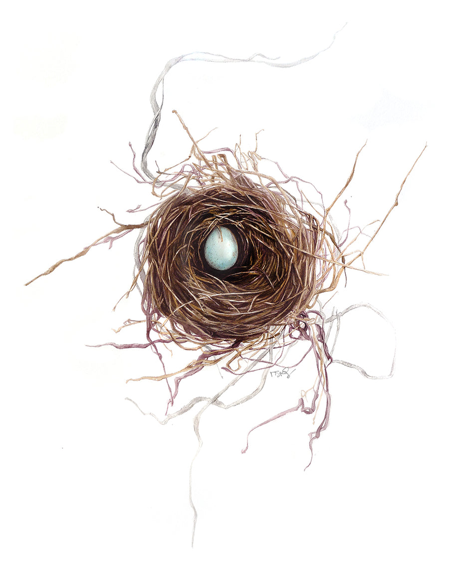 Small intricate bird nest Amazing watercolour of a bird nest by artist Michelle SaintOnge. It has a single robin's egg in it.