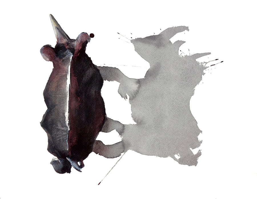 Amazing watercolour of a white rhino by artist Michelle SaintOnge.