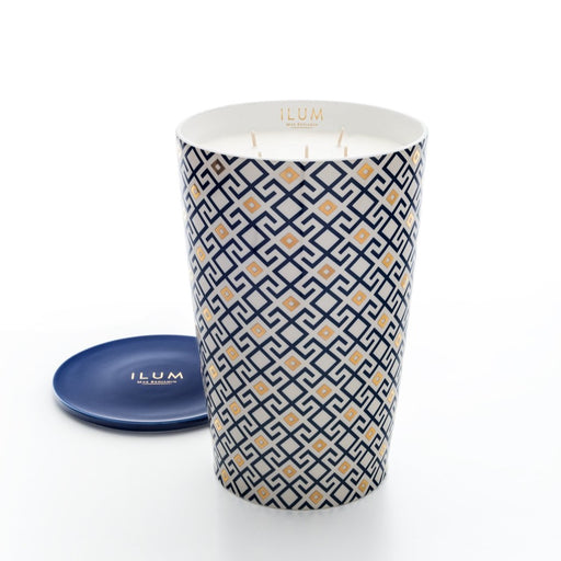 MAX BENJAMIN ILUM COLLECTION 5.15KG CANDLE - FIG ARABESQUE
