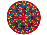 Rainbow Flower Mirror Patch
