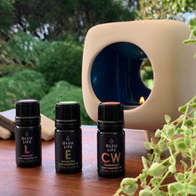 Hut Essential Oil Burner + Essential Oil Trio Pack