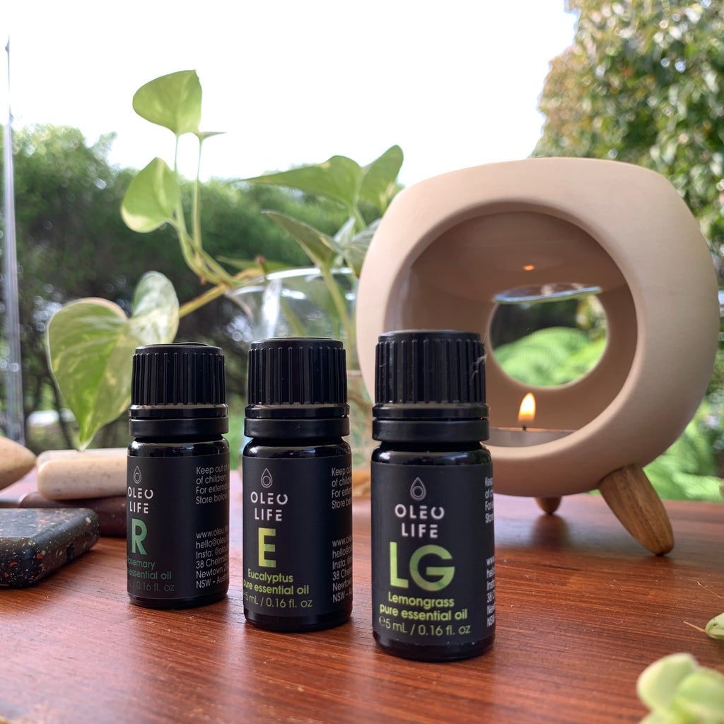 Igloo Oil Burner + Essential Oil Trio Pack