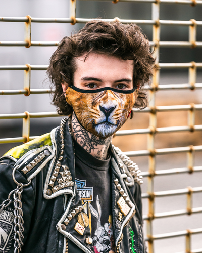 Animal Print Protective Reusable Face Mask - Fierce Lion