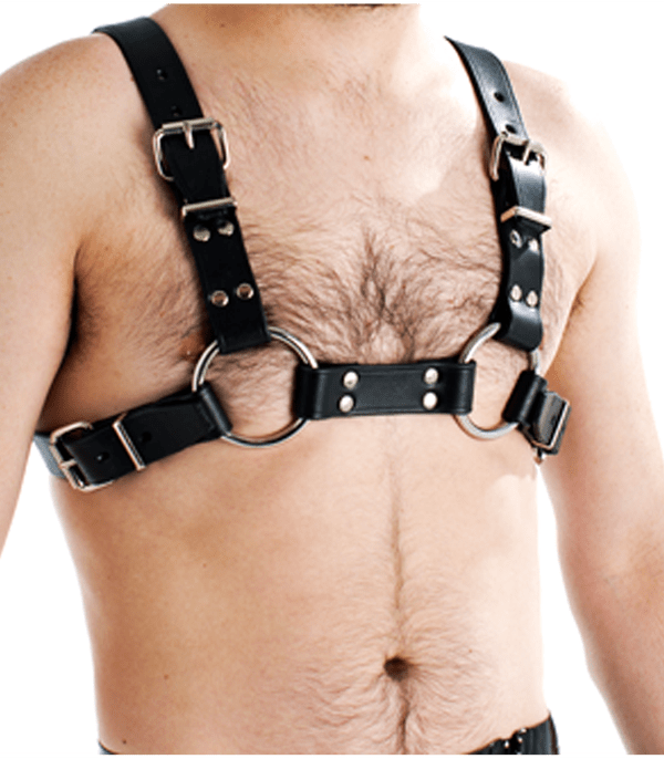 BRA003 mens bulldog harness front image saucy hq
