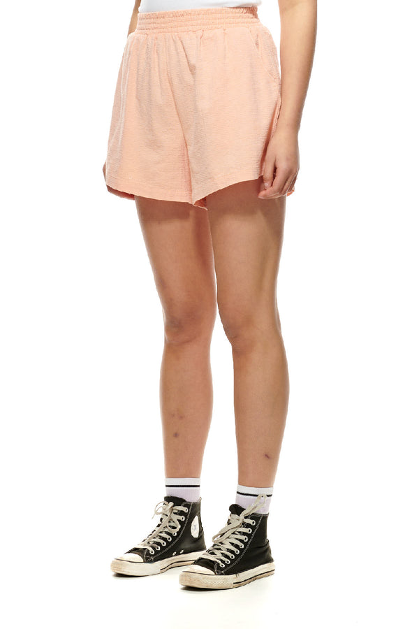 Stussy Ladies Vermont HW Short