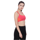 Women's Organic Cotton Padded Sports Bra - Tech Sweat Bra