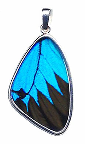 Ulysses Swallowtail Blue and Black Butterfly Wing L Pendant
