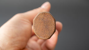 Kanehide MV Chopper 160mm Pakka Handle