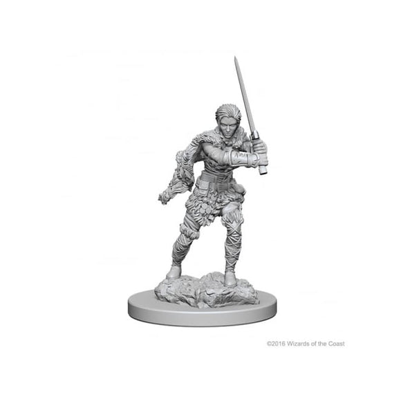 DUNGEONS AND DRAGONS NOLZUR'S MARVELOUS MINIATURES HUMAN BARBARIAN FEMALE