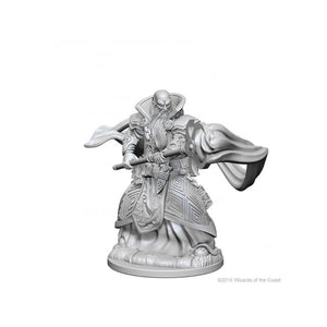 DUNGEONS AND DRAGONS NOLZUR'S MARVELOUS MINIATURES HUMAN WIZARD MALE