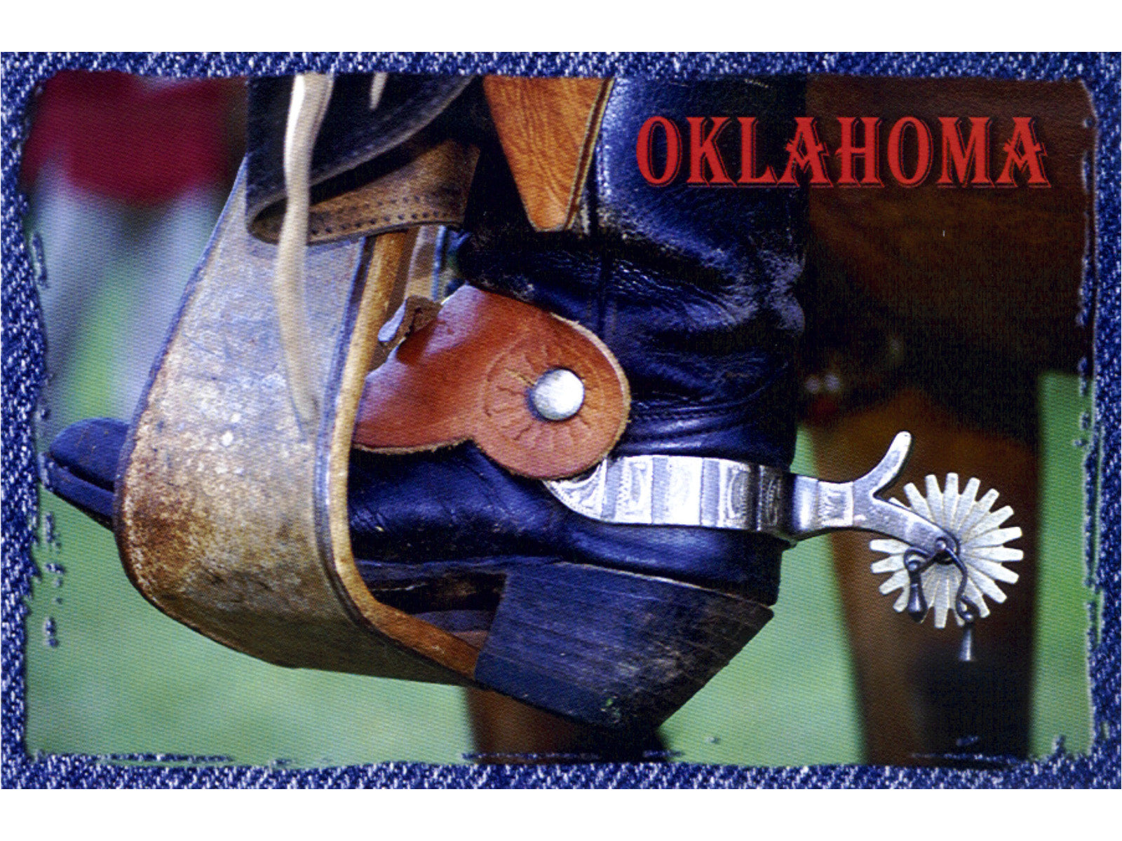 Oklahoma Cowboy Country Postcard