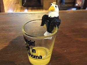 eagle hanging out  shot glass
