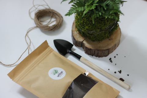 Kokedama Ball - DIY Kit