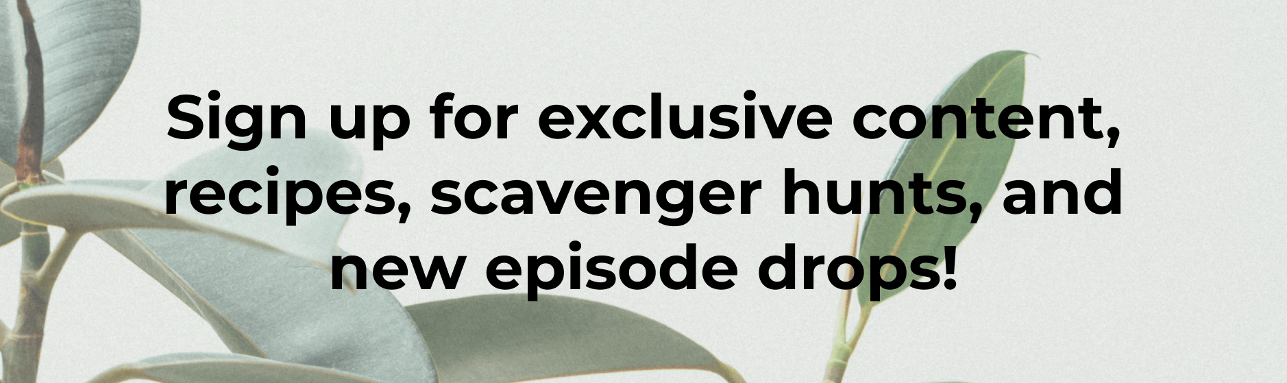 Sign up for exclusive content, recipes, scavenger hunts, and new episode drops!