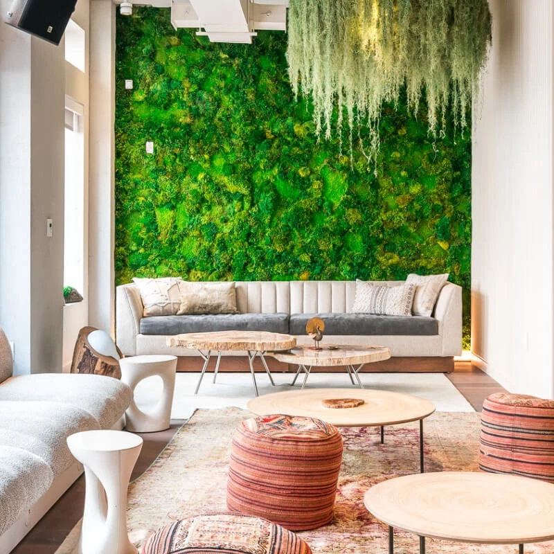 Moss wall behind a couch