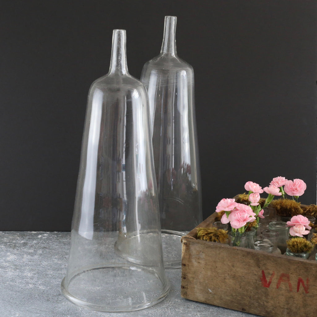 Pair Glass Cloches