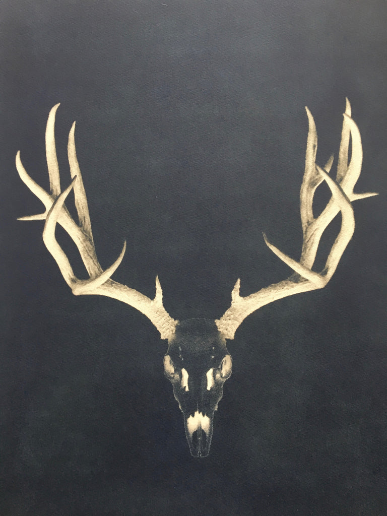 Deer Head Prints