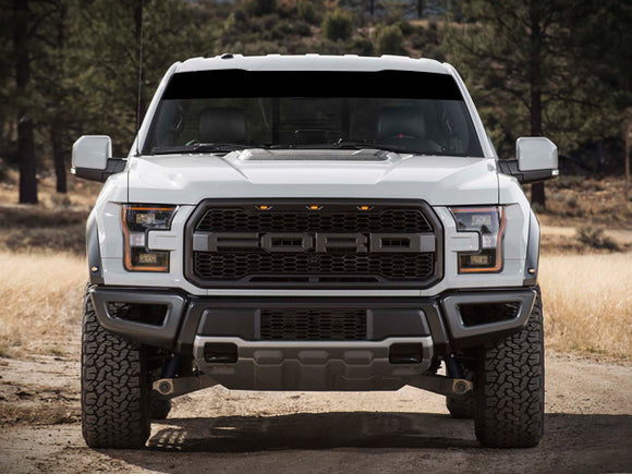 Windshield Banner Sun Visor Strip Decal Ford F150 Series Raptor