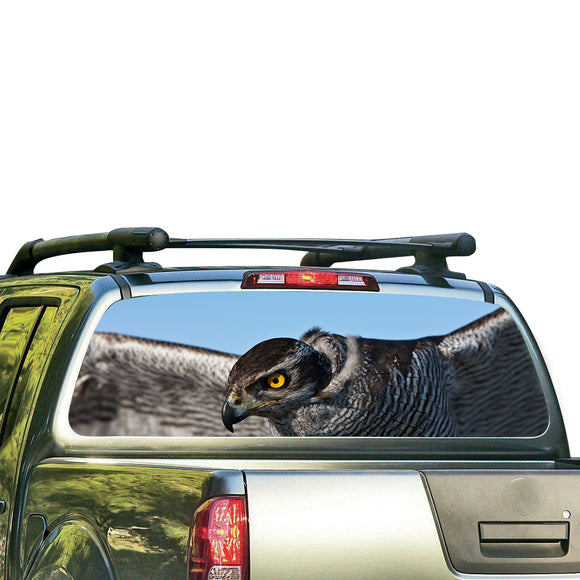Eagle 1 Perforated for Nissan Frontier decal 2004 - Present