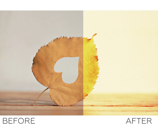 Autumn Freedom - Photoshop Actions