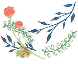 Illustrated Print - Balanced Botanicals