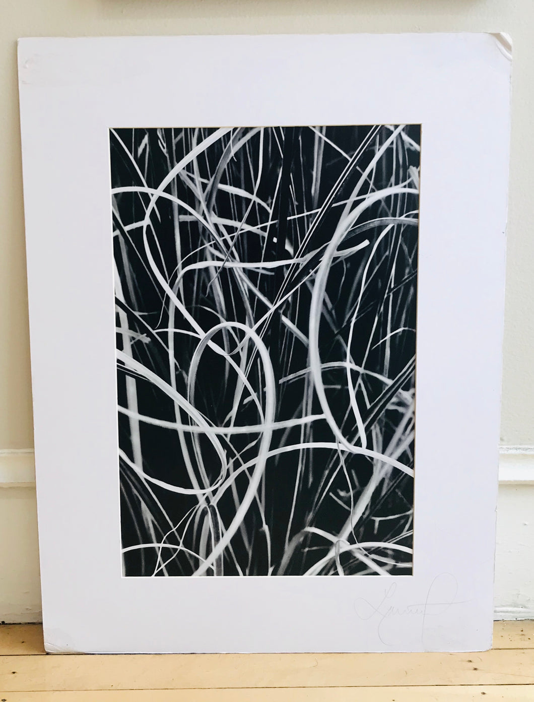 Spiraling Black and White Print