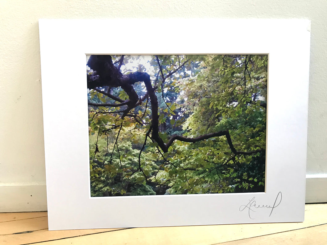 Large Diagonal Tree Branch Abstract Print