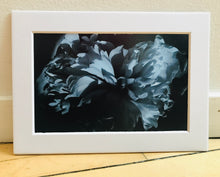 Load image into Gallery viewer, Small Floral Prints