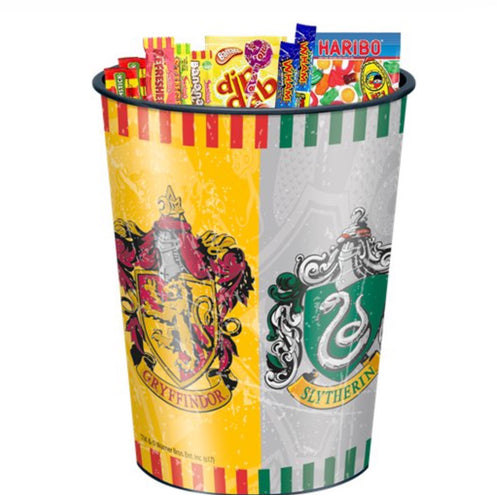 Harry Potter Keepsake Tumbler Cup