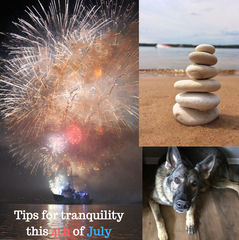 calming dogs for 4th of July, firework anxiety, CBD, possible love, pawsible love