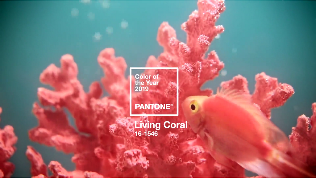 """Living Coral"" El color del año 2019 - Pantone"
