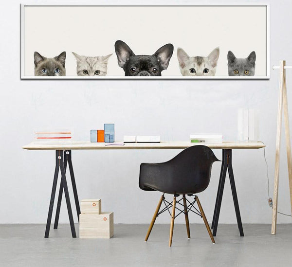 Dog and cats, canvas