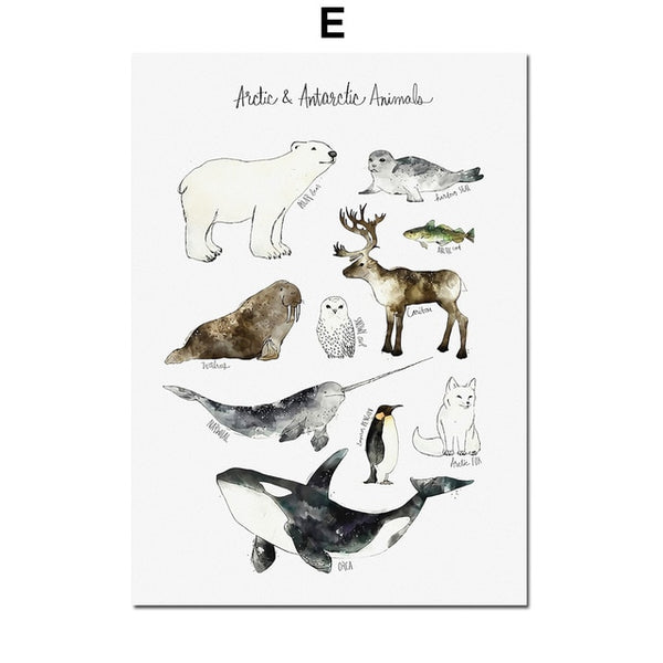 Educational Animals, canvas
