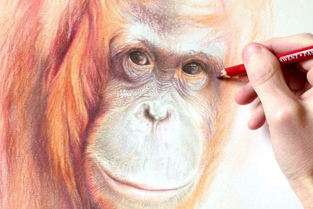 Explore Pastel Pencils with Martin Aveling
