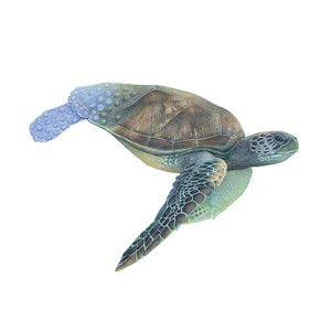 Drawing of a green sea turtle by wildlife artist Martin Aveling (mART)