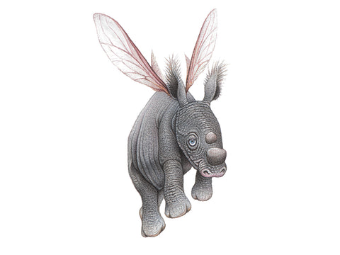 Drawing of a baby rhino with wings of an insect or fairy