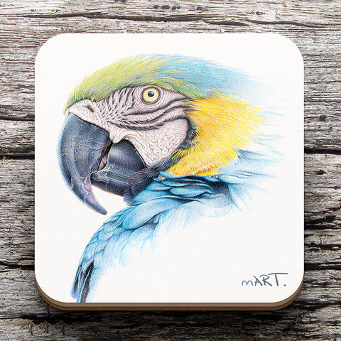 Coaster (Blue-and-yellow Macaw) - Martin Aveling