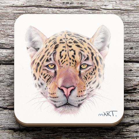 Coaster (Jaguar)