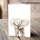 Greetings Card (6 x Elephant) - Martin Aveling