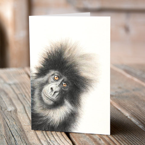 Greetings Card (6 x Mountain Gorilla) - Martin Aveling
