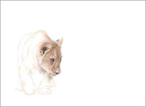 Limited Print (Lion Cub) - Martin Aveling