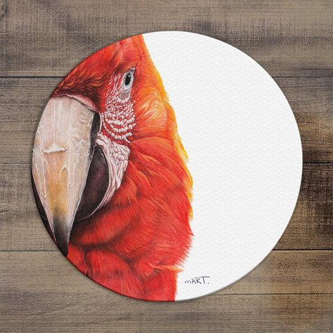 Glass Worktop Saver (Macaw I) - Martin Aveling