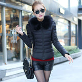 Jacket Autumn and Winter Fashion Big Fur Collar Down