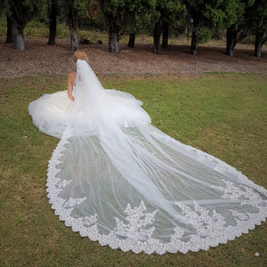 Amelia one tier sequin lace applique ivory cathedral wedding bridal veil